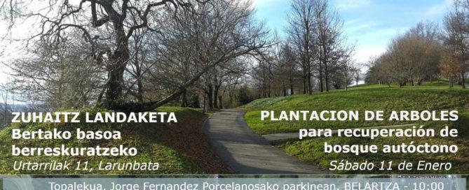 Zuhaitz Landaketa